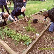 Aménager un jardin partagé dans un quartier